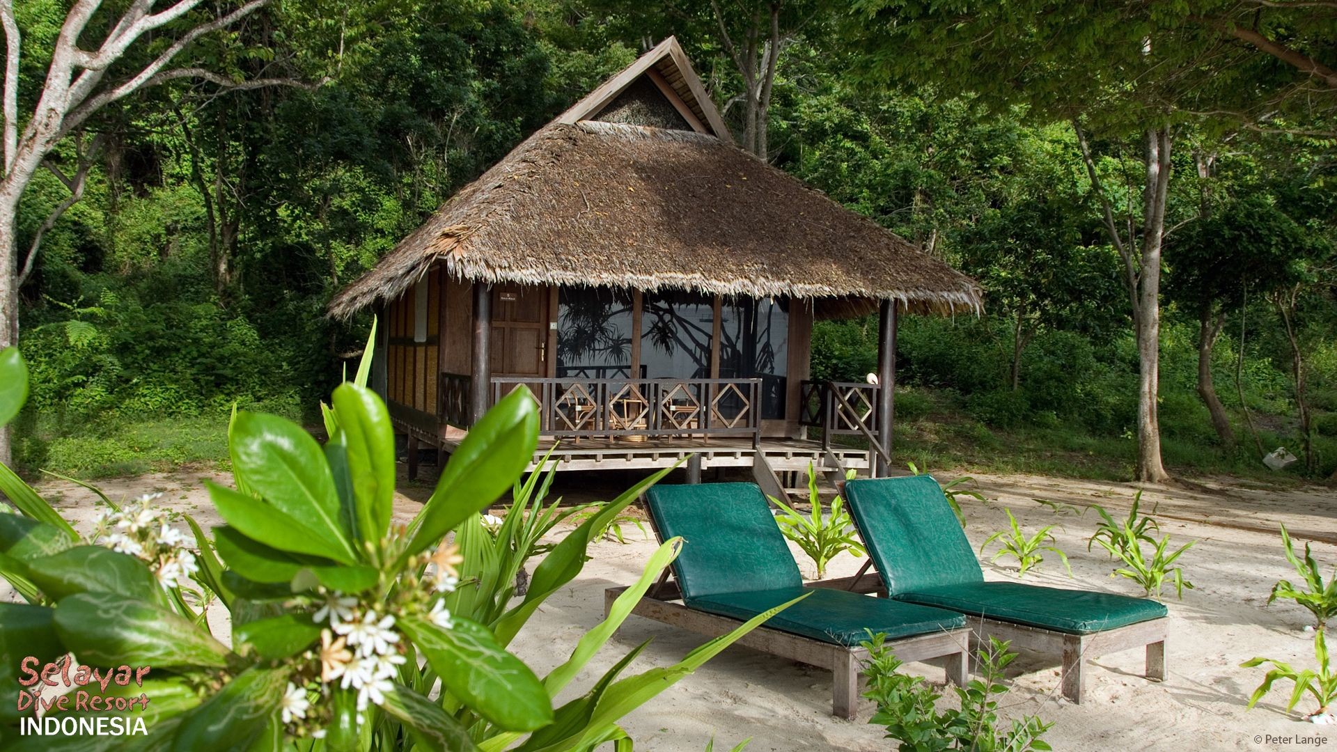 Resort Strand-Bungalow